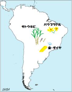 ブラジルの名産