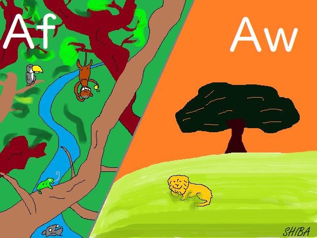 ジャングルとサバンナ
